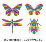 Stock vector set of abstract polygonal insects vector illustration geometric colorful butterfly dragonfly and 1089996752