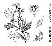 collection of ink vintage plant ... | Shutterstock .eps vector #1090135478
