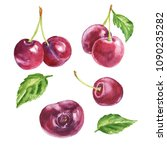 Hand Drawn Watercolor Cherry...