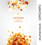 autumn leaves background with...   Shutterstock .eps vector #109024892