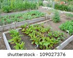 Community Allotment Garden Wit...