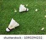 shuttlecock are on green grass | Shutterstock . vector #1090294232