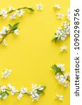 spring concept. flat lay of... | Shutterstock . vector #1090298756