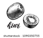 ink hand drawn whole kiwi fruit ... | Shutterstock .eps vector #1090350755