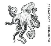 octopus vector illustration.... | Shutterstock .eps vector #1090395572