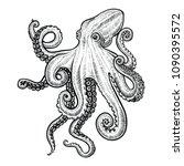 octopus vector illustration.... | Shutterstock .eps vector #1090395572