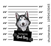 siberian husky criminal. police ... | Shutterstock .eps vector #1090415045