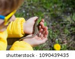 beautiful curly child and... | Shutterstock . vector #1090439435