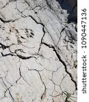 Small photo of The cracked ground, Ground in drought, Soil texture and dry mud, Dry land.