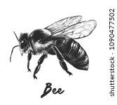 engraved style illustration for ... | Shutterstock . vector #1090477502