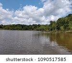 toledo bend lake swamp texas | Shutterstock . vector #1090517585