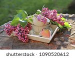 lilac flowers with cup on... | Shutterstock . vector #1090520612