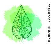 exotic tropical palnt leaf.   Shutterstock .eps vector #1090559612