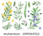 watercolor greens collection... | Shutterstock . vector #1090565522