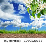 green grass on the soil at... | Shutterstock . vector #1090620386