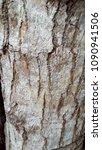 mahogany tree trunk   Shutterstock . vector #1090941506
