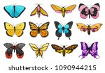 Stock vector collection of colorful butterfly or wild moths insects mystical or entomological symbol of freedom 1090944215