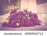 lilac colored lilac and pink... | Shutterstock . vector #1090954712