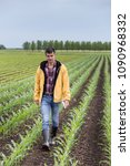 Small photo of Young handsome farmer with tablet walking on corn field in spring. Agribusiness and innovation concept