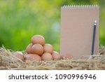 chicken eggs quality organic in ... | Shutterstock . vector #1090996946