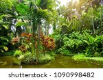 lush tropical vegetation of the ... | Shutterstock . vector #1090998482