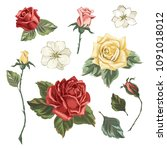 set of roses in vintage style.... | Shutterstock .eps vector #1091018012
