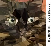 the cat of the polygon shapes | Shutterstock .eps vector #1091102306