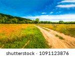 summer rural meadow flowers... | Shutterstock . vector #1091123876