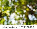 abstract bokeh green background ... | Shutterstock . vector #1091150132