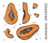 set of papaya exotic fruit in...   Shutterstock .eps vector #1091245622
