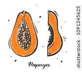 papaya tropical fruit in doodle ... | Shutterstock .eps vector #1091245625