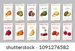 food design with vegetable.... | Shutterstock .eps vector #1091276582