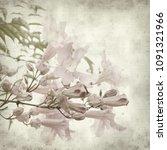 textured old paper background... | Shutterstock . vector #1091321966