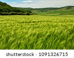 Small photo of Agriculture landscape in Macin mountains of Dobrogea, Romania