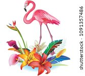 arrangement from tropical... | Shutterstock .eps vector #1091357486