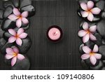 set of frangipani flower with... | Shutterstock . vector #109140806