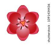 beautiful overhead red tulip... | Shutterstock .eps vector #1091434436