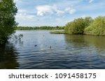 fleet pond nature reserve in... | Shutterstock . vector #1091458175