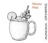 Moscow Mule cocktail illustration. Alcoholic cocktails hand drawn vector illustration. Sketch style.