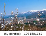 white flower and snow covered... | Shutterstock . vector #1091501162