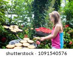 child watching butterfly at... | Shutterstock . vector #1091540576
