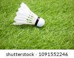 shuttercock is on green grass | Shutterstock . vector #1091552246