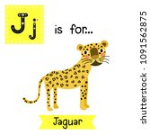 Cute Children Zoo Alphabet J...