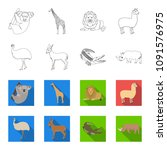 lama  ostrich emu  young... | Shutterstock .eps vector #1091576975