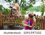 family feeding giraffe in zoo.... | Shutterstock . vector #1091597102