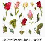 watercolor set of roses. heads... | Shutterstock . vector #1091620445