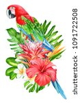 ara parrot and tropical flowers ... | Shutterstock . vector #1091722508