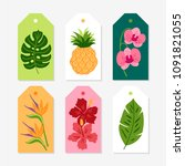 set of jungle gift tags with... | Shutterstock .eps vector #1091821055