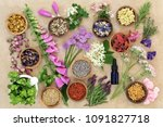 herbs and flowers used in... | Shutterstock . vector #1091827718