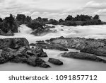 black and white color of lee...   Shutterstock . vector #1091857712